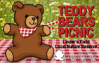 Teddy Bears Picnic at Linder's Field Local Nature Reserve, Buckhurst Hill