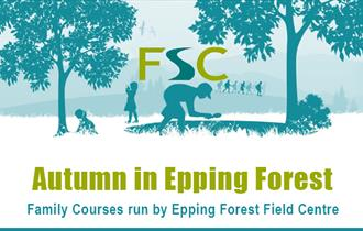 Epping Forest Field Centre explores Autumn in the forest
