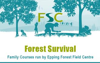 Learn how to survive in the forest at the Epping Forest Field Centre