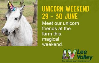 Unicorn Weekend at Lee Valley Park Farms.