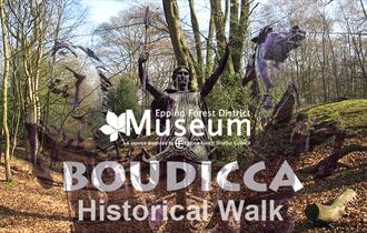 A historical walk in Epping Forest exploring sites linked to Queen Boudicca